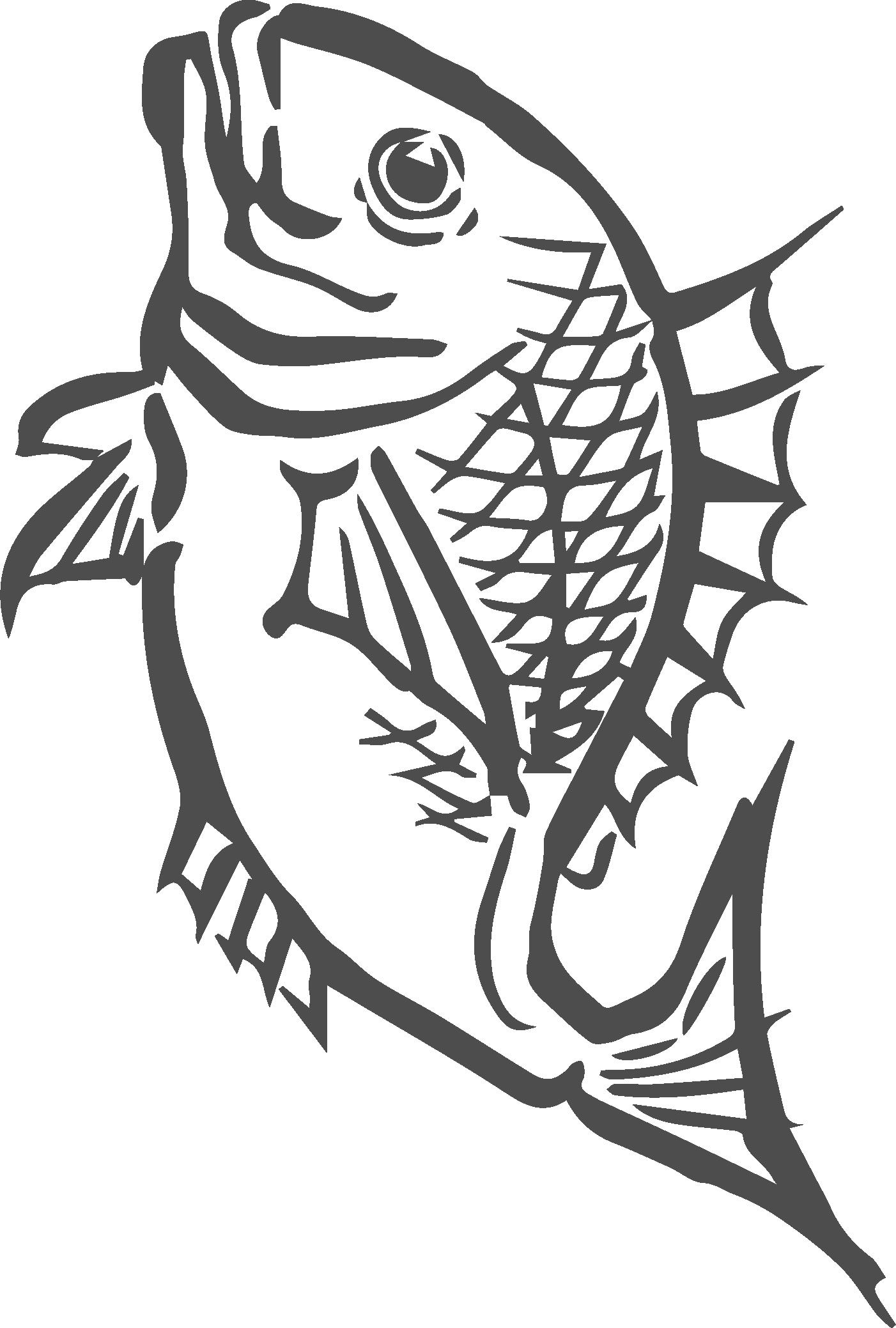 八蔵水産 鯛